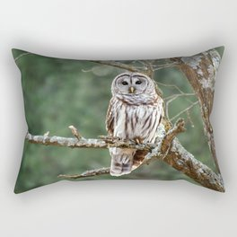 Barred Hoot Owl Rectangular Pillow