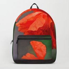 Red Punch Backpack