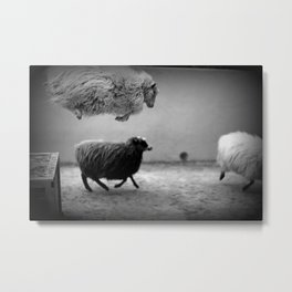 happy sheeps Metal Print