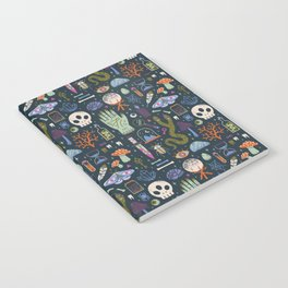 Curiosities Notebook