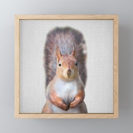 Squirrel - Colorful Framed Mini Art Print
