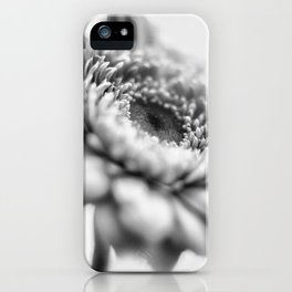Gerbera 6 iPhone Case