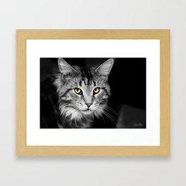 Demon Eyes Framed Art Print