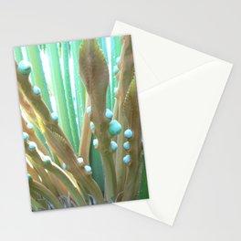 Mauritius Palm Stationery Cards