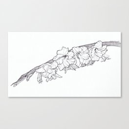 Leaning bloom Canvas Print