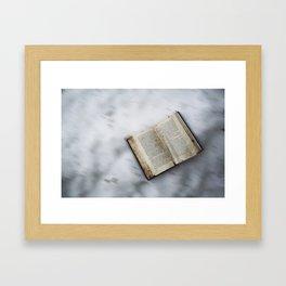 Book's little world 2 Framed Art Print