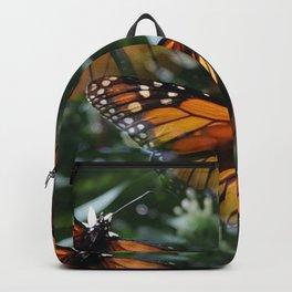 Butterfly pattern Backpack