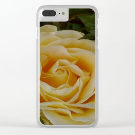 Yellow Tearose Clear iPhone Case
