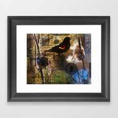 life thru the eyes of a red winged blackbird Framed Art Print
