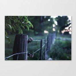 Domingo en el campo - Sunday at the countryside Canvas Print