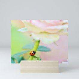 Ladybird on pink rose stem Mini Art Print