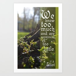 Convinced of Too Little Art Print