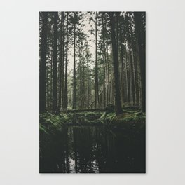 Faded Forest Canvas Print