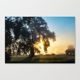 Beams of Hope  Canvas Print