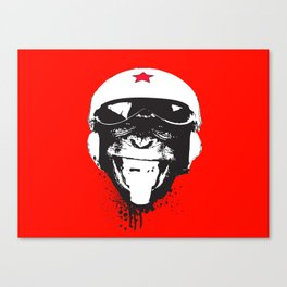 Flying Monkey Canvas Print