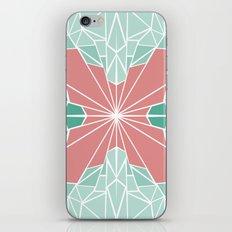 The Deco iPhone & iPod Skin