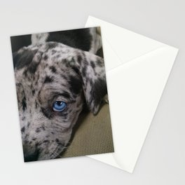 My Dixie Blue Stationery Cards