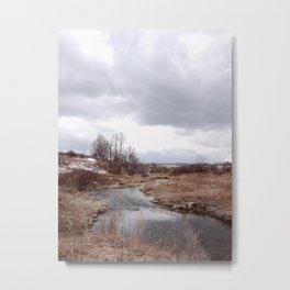 Dryden, NY Metal Print