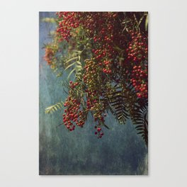Grunge garden berries Canvas Print