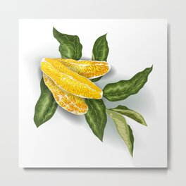 Orange Fruit Bloom Metal Print