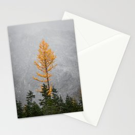The Beauty of Larches Stationery Cards