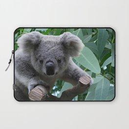 Koala and Eucalyptus Laptop Sleeve