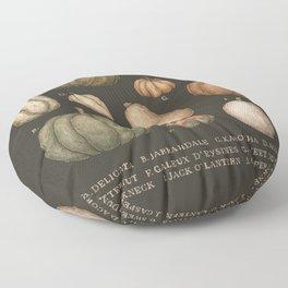Pumpkins and Gourds Floor Pillow