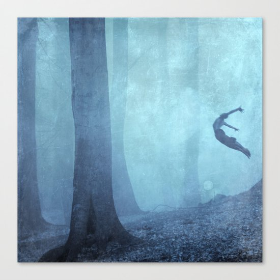 free spirit II Canvas Print