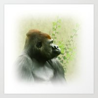 ape Art Prints featuring Ape by Shalisa Photography