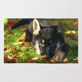 Cute 8 weeks old shepherd puppy Rug