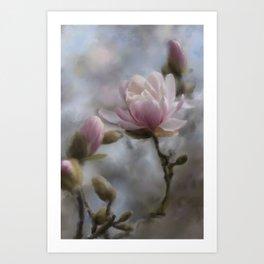 Budding Magnolia Tree Art Print