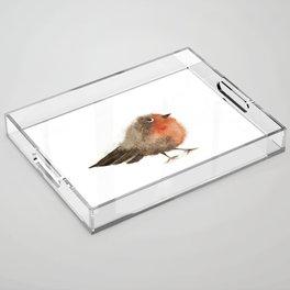 Fuzzy Bird Acrylic Tray