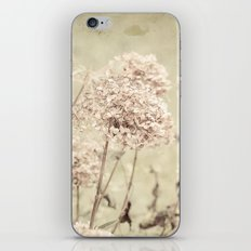 Antique Hydrangeas -- Dreamy Pastel Autumn Botanical iPhone & iPod Skin