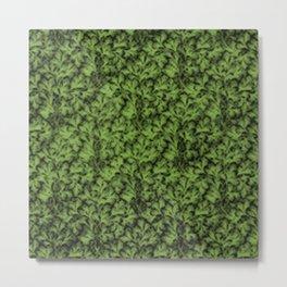 Vintage Floral Lace Leaf Greenery Metal Print