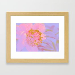 Flower Glow Framed Art Print