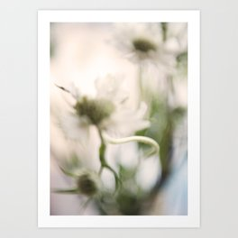 Thistle and Weed Art Print