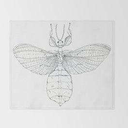 Phyllidae Throw Blanket