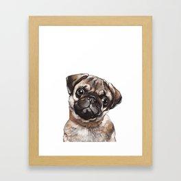 The Melancholy Pug Framed Art Print