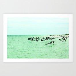 pelican't Art Print