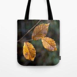 Leaves in Light Tote Bag