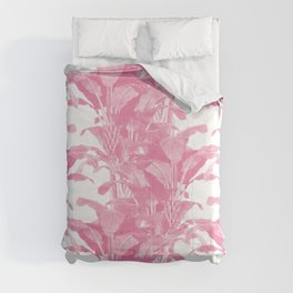 Lady Devereaux Comforters
