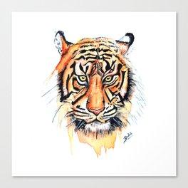 Tiger (Watercolor) Canvas Print