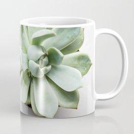 Simple succulent beauty Coffee Mug