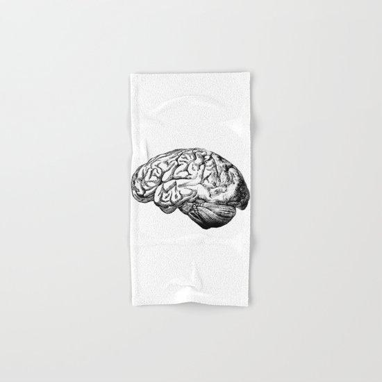 Brain Anatomy by stilleskyggerart