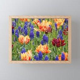 spring messengers Framed Mini Art Print