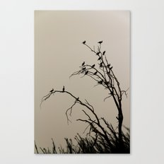 Birds on a tree Canvas Print
