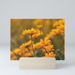 the yellows of spring Mini Art Print