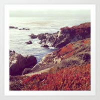 Ice Plants and Big Sur Art Print