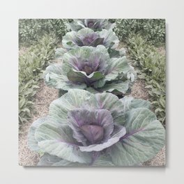 Purple Cabbage Patch Metal Print