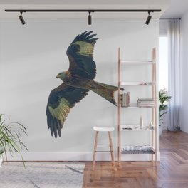 flying red kite Wall Mural